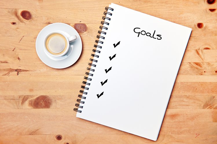 goals check list